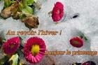 au revoir l'hiver, bonjour le printemps