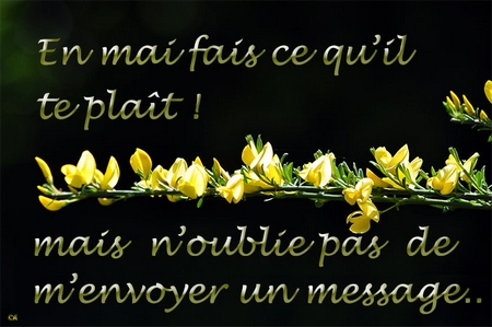 envoi message